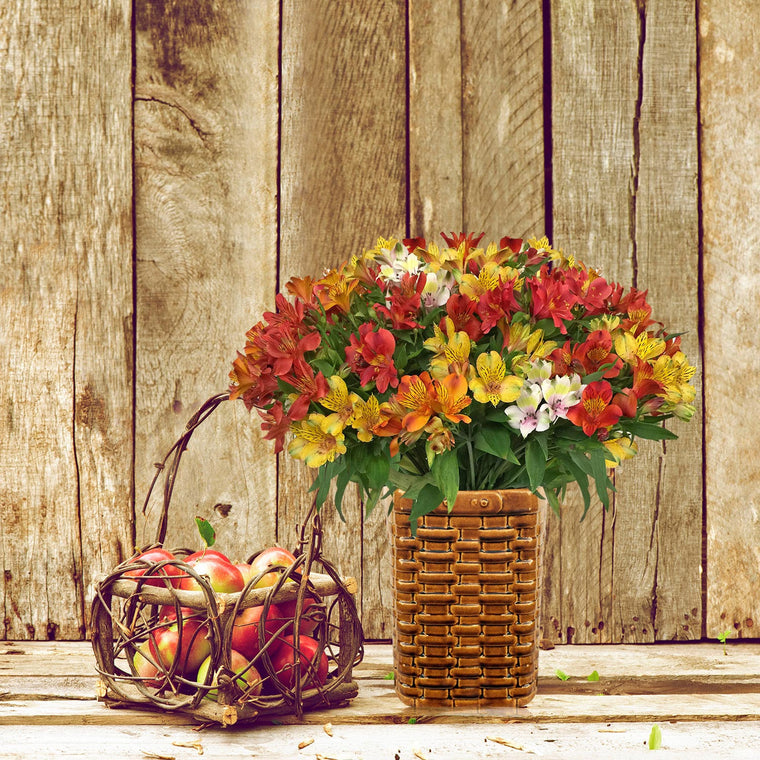Countryside in the Fall Bouquet Pack 4- EbloomsDirect