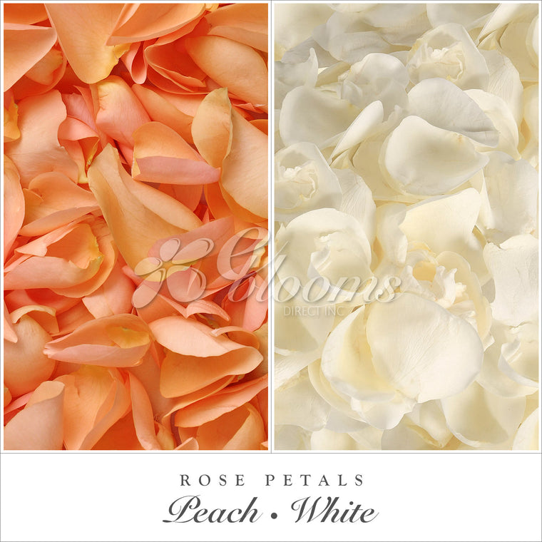 Rose Petals Peach and White