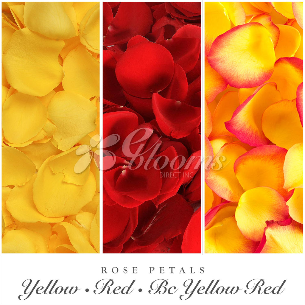 Rose petals Yellow, Red and bicolor orange by Fall weddings