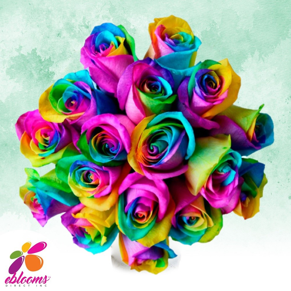 Rainbow tinted Roses - EbloomsDirect