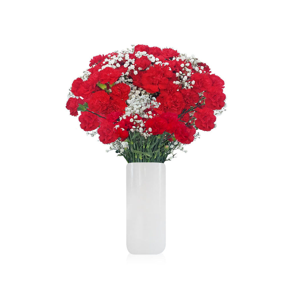 Mini Carnation and Gypsophila RED www.ebloomsdirect.com2