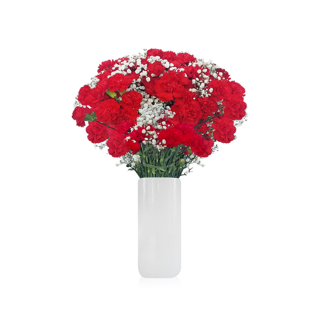 Mini Carnation & Baby breath Red Bouquet Pack 6- EbloomsDirect