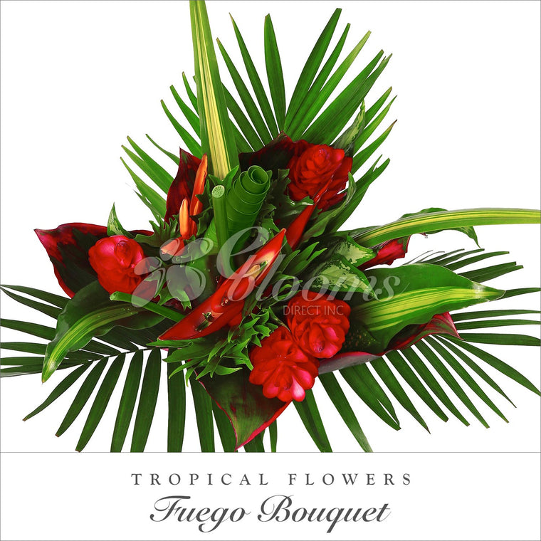 Fuego Tropical Bouquets - EbloomsDirect