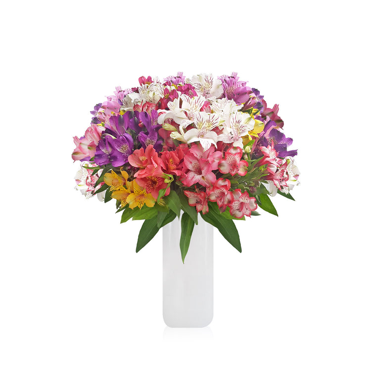 Alstroemeria Bouquet Seasonal - EbloomsDirect