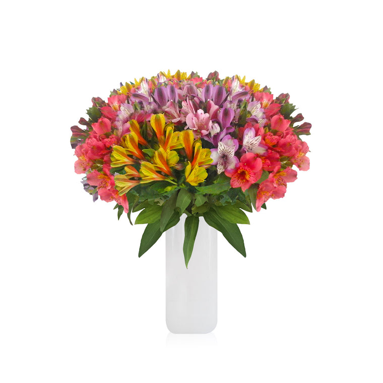 Alstroemeria Summer Bouquet with Vase