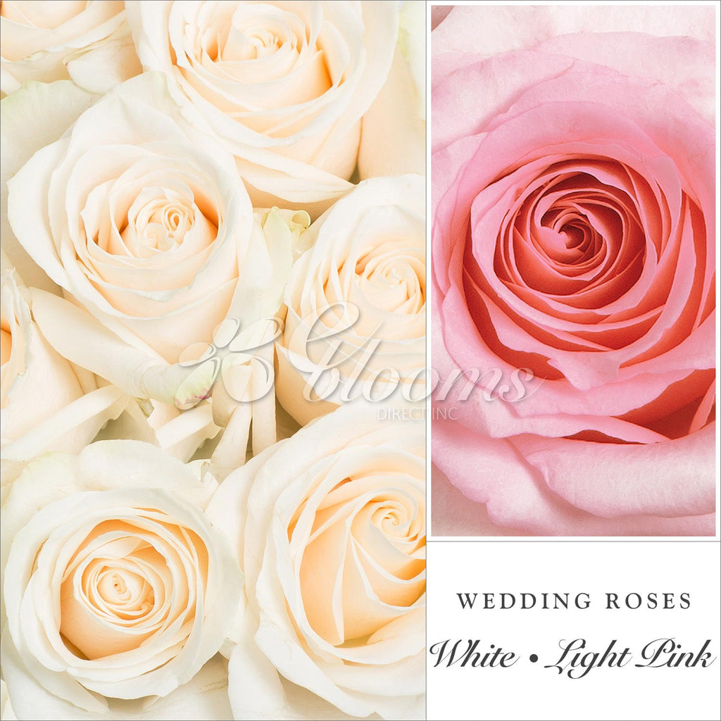 Pink & White Wedding Rose Combo
