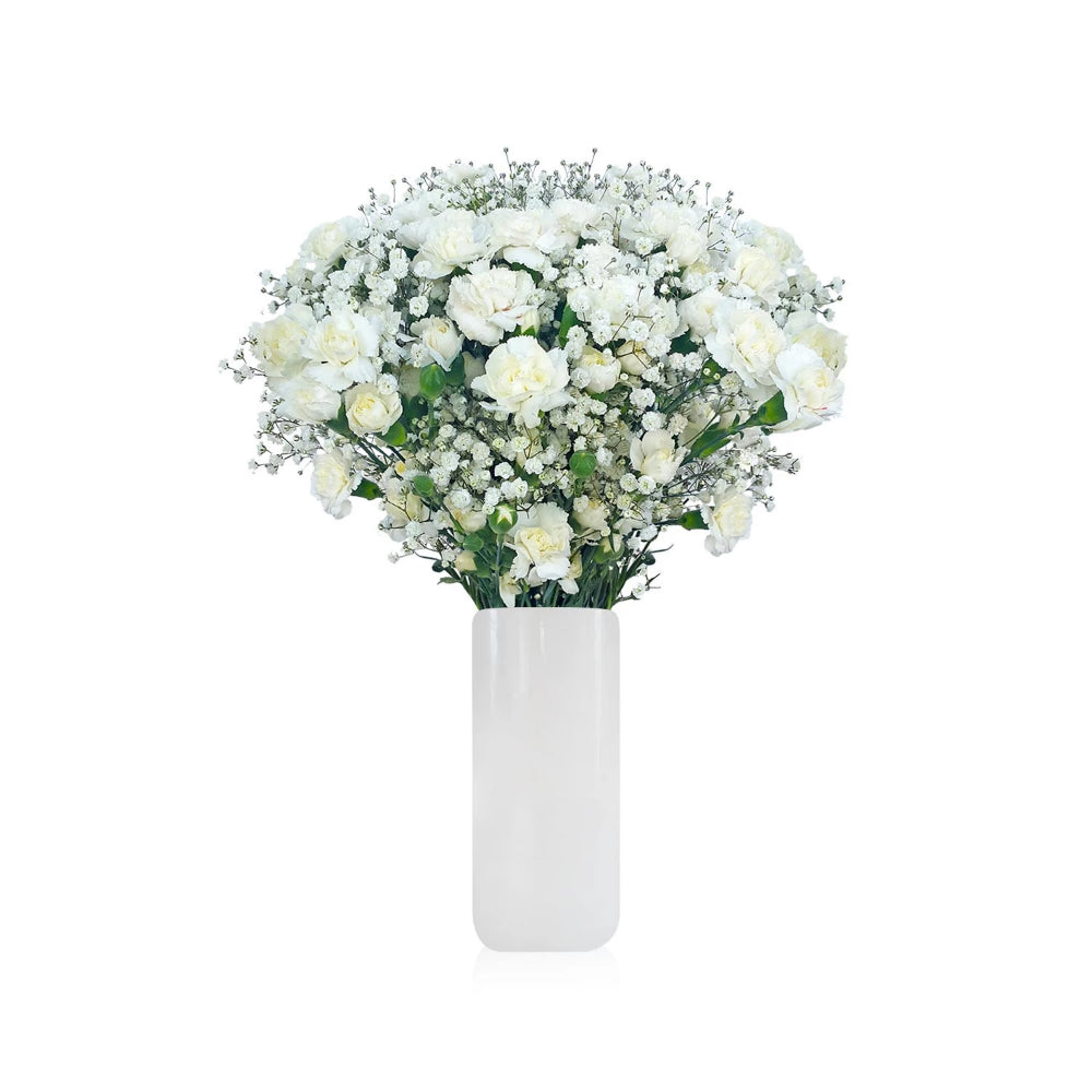 Carnation and Gypsophila white www.ebloomsdirect.com
