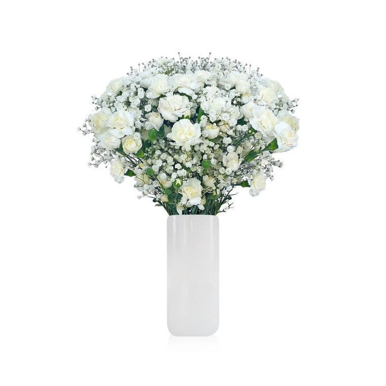 Mini Carnation & Baby breath White Bouquet Pack 6- EbloomsDirect