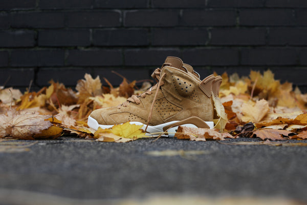 Jordan 6 Wheat Golden Harvest
