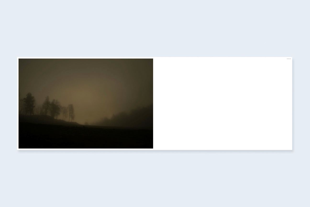 Bright Black World by Todd Hido (Signed)}
