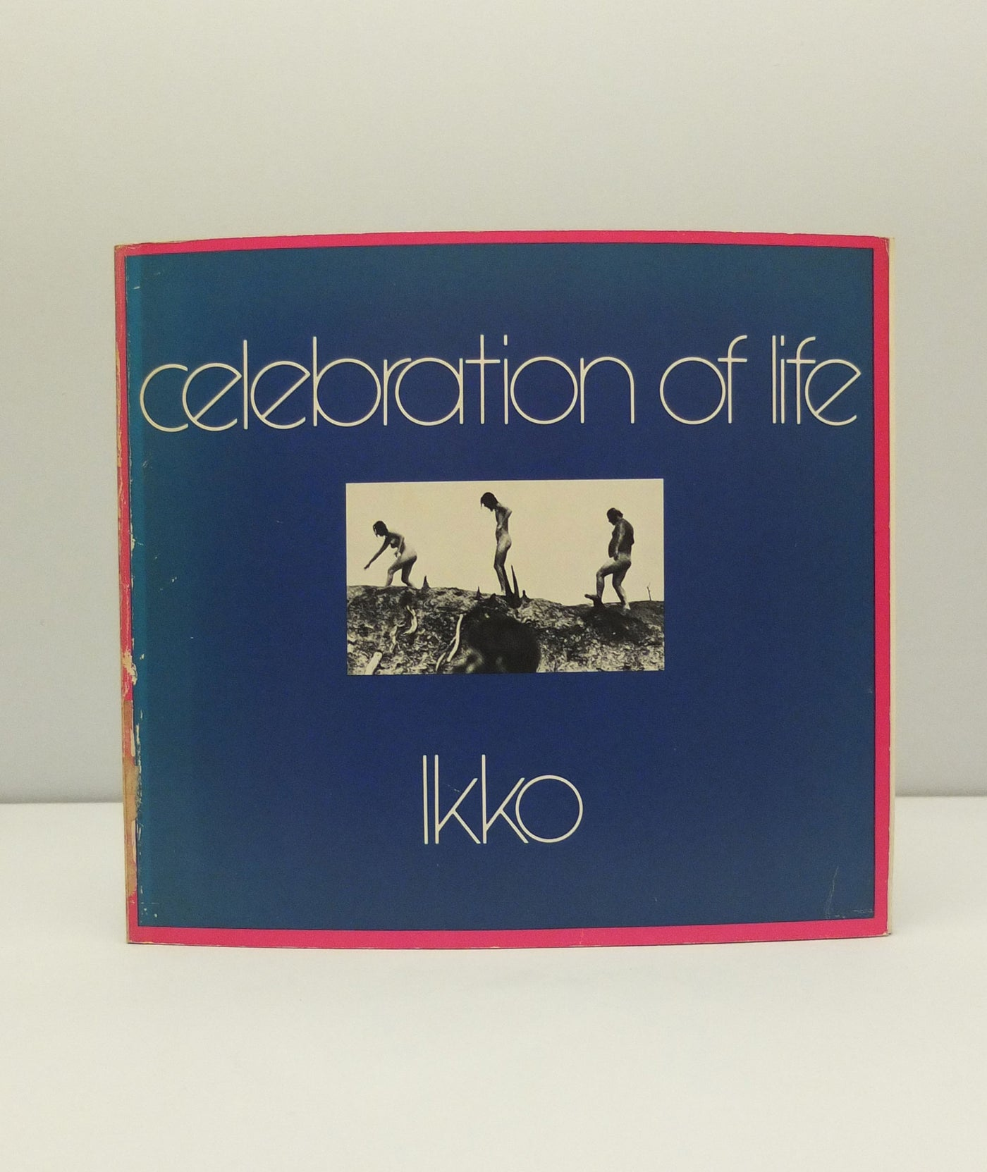 Celebration of Life by Ikko Narahara}