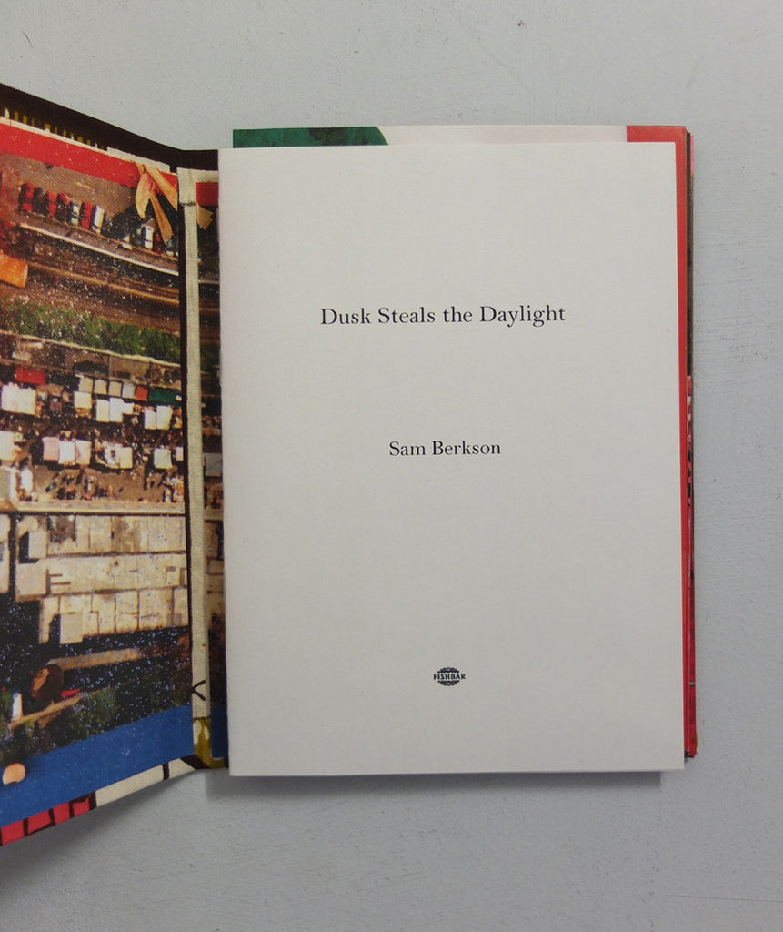 Dusk Steals the Daylight by Lorenzo Vitturi & Sam Berkson