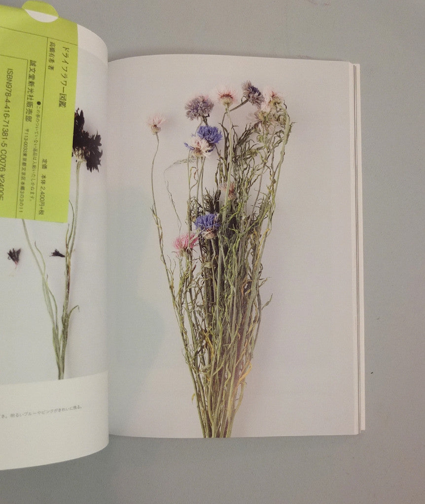 The Encyclopaedia of Dried Flowers