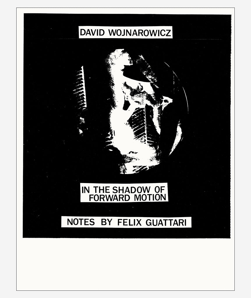 In the Shadow of Forward Motion by David Wojnarowicz}