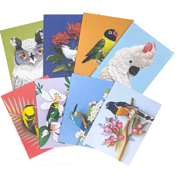 Birds of the World Note Cards