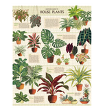 House Plants 1000 Piece Jigsaw Puzzle