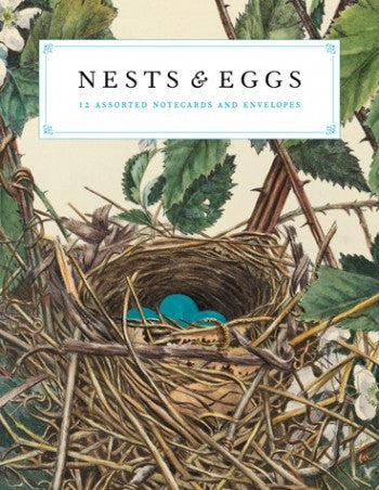 Nests & Eggs Note Cards