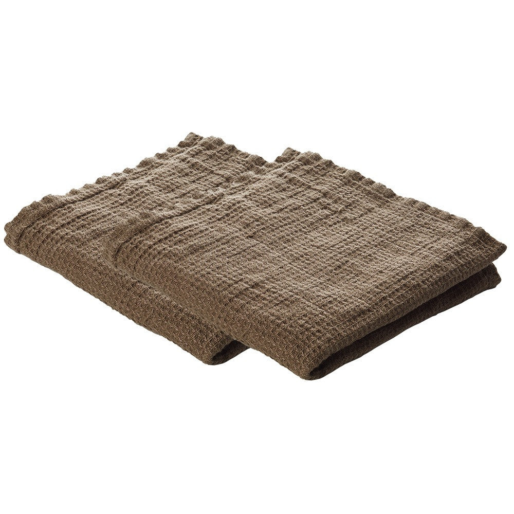 2 linen dish cloths