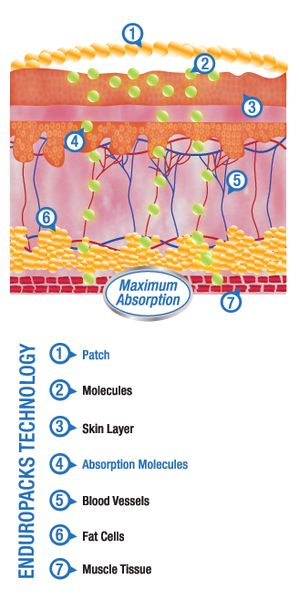 Component Parts Of Transdermal Patches