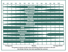 pH Levels of Soil Acidic vs. Alkaline