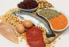 A diet high in protein or essential amino acids can promote muscle recovery