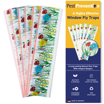 Highly Effective Window Fly Traps | 6 Pack | Indoor Fly Catcher and other Small Flying Insects