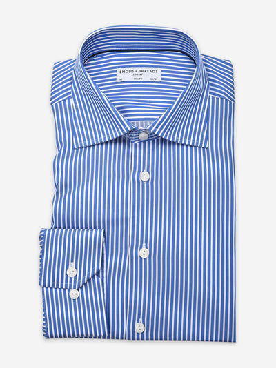 Royal Blue Bold Striped Poplin Shirt