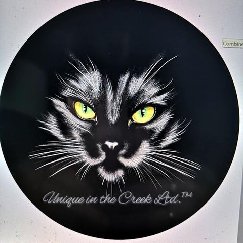 502. Black Cat VINYL Insert