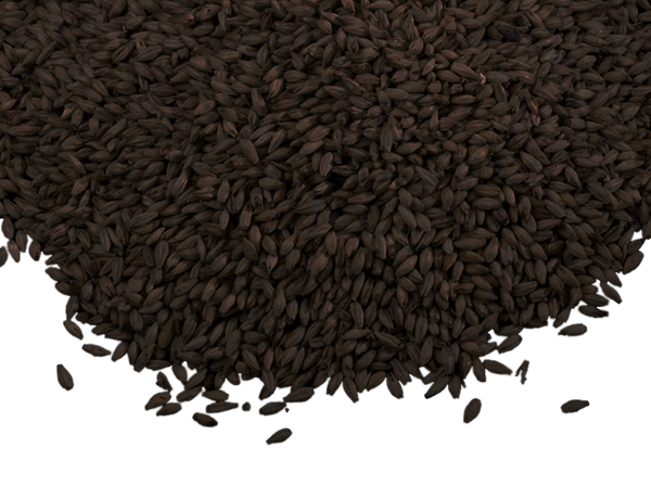 BRIESS BLACKPRINZ MALT 1 OZ