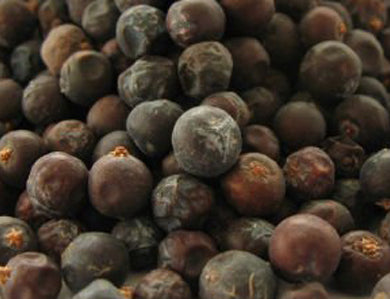 BREWER'S BEST JUNIPER BERRIES (1 OZ)
