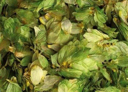 US CASCADE LEAF HOPS 1 OZ