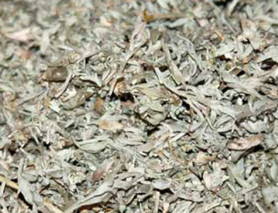 BREWER'S BEST DRIED WORMWOOD (1 OZ)