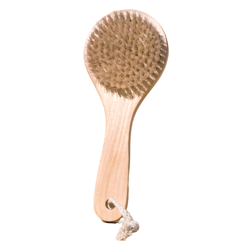 Midnight Paloma Body Dry Brush