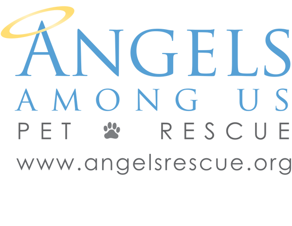 Angels Rescue Gift Card