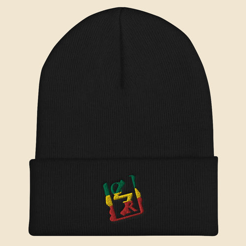 Rasta Spray Logo Beanie - (Assorted Colors)