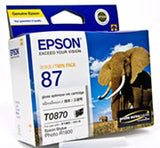 Epson (T0870-T0879) R1900 Ink Cartridges