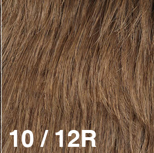 Dream Wigs USA | 10/12R Medium Brown (10) frosted with Light Brown (12)