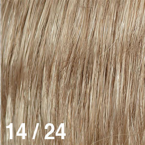 Dream Wigs USA | 14/24 Light Golden Brown (14) frosted with Golden Blonde (24)