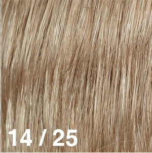 Dream USA Wigs | 14-25 Light Golden Brown (14) frosted with Light Golden Blonde (25)