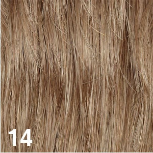 Dream USA Wigs | 14  Light Golden Brown