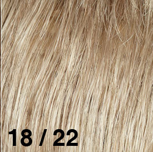 Dream USA Wigs | 18-22  Light Ash Brown (18) frosted with Champagne Blonde (22)