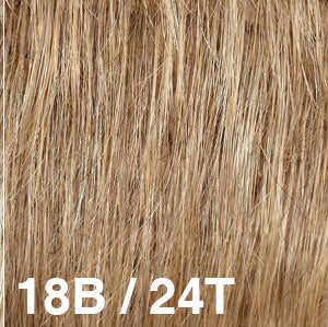 Dream USA Wigs | 18B-24T  Light Ash Brown (18) tipped with Golden Blonde (24)