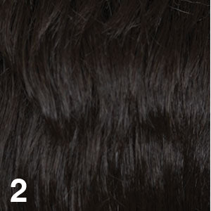 DREAM USA WIGS | 2 DARKEST BROWN