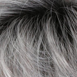 CHROMERT1B | Gray & White With 25% Medium Brown Blend & Off-Black Roots