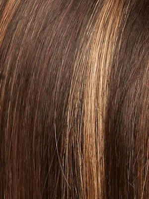 JAVA FROST | Dark Brown Base with Gold Blonde and Light Auburn Highlights