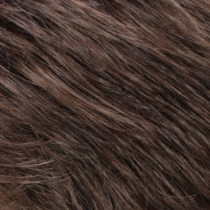 R14 8H Golden Brown with Dark Blonde Highlights on Top