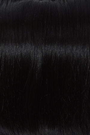 Raquel Welch Wigs - Color BLACK R1HH