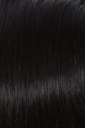 Raquel Welch Wigs | DARK BROWN R3HH