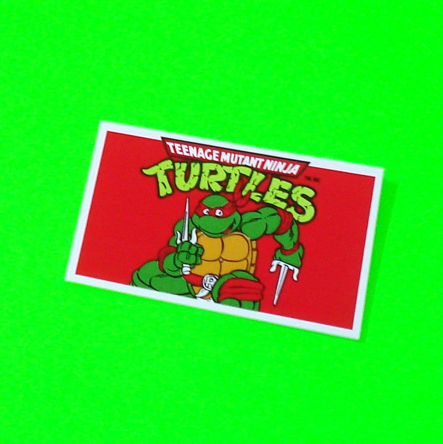 Teenage Mutant Ninja Turtles Party Invitation - Single Card