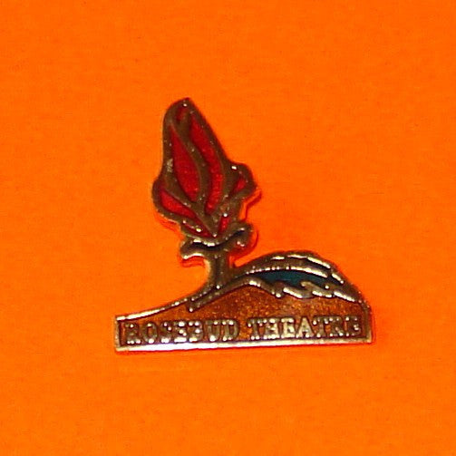 Rosebud Theatre Pin
